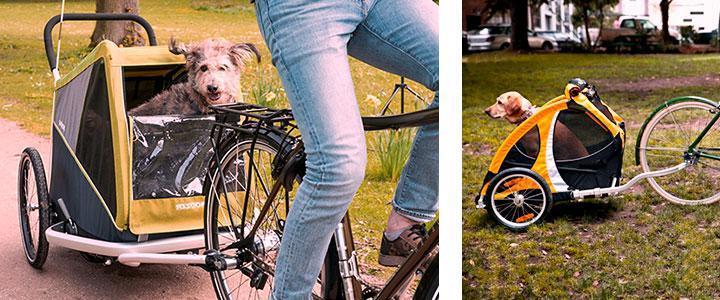 Carritos para llevar perros en bicicleta