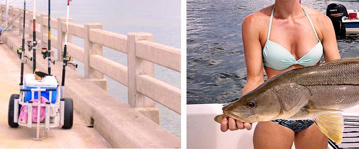 Carritos de pesca